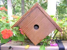 Wren Bird House - Front View